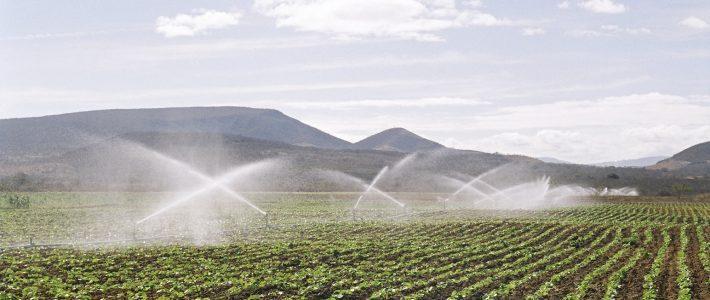 Irrigação não é despesa, mas sim investimento
