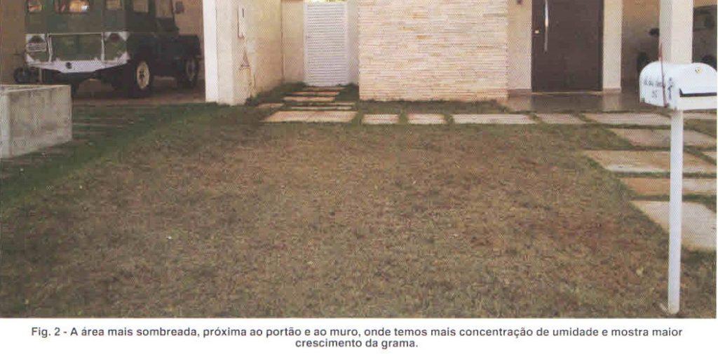 figura-2-artigo-irrigacao-06-12