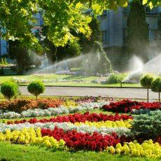Setores Irrigação